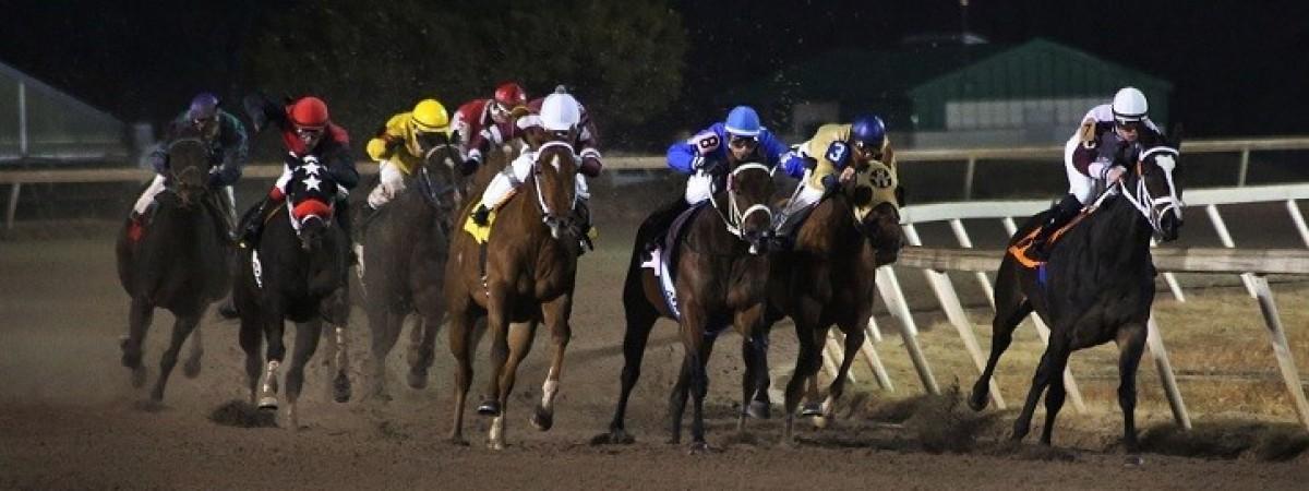 Race Nights